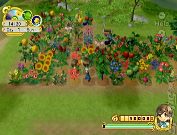 free download harvest moon back to nature for pc